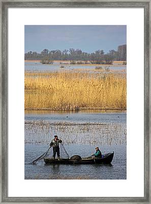 Fishermen Bring In Their Harvest Framed Print by Martin Zwick