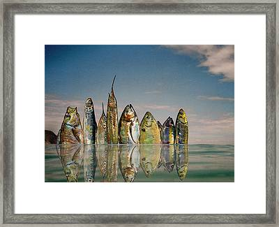 Fishhattan Framed Print by Juan  Bosco