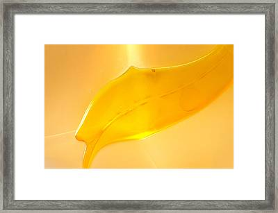 Fishhooks Of Light Framed Print by Omaste Witkowski