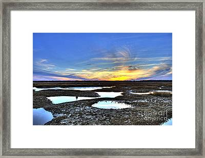 Fishing And Oystering Framed Print by John Wollwerth