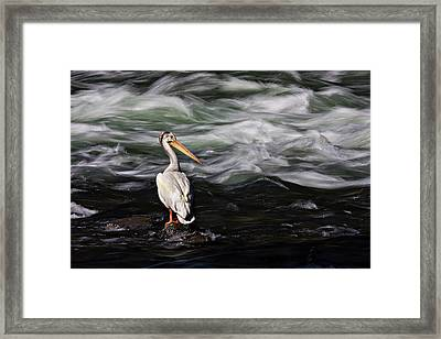Fishing At Lehardy Rapids Framed Print
