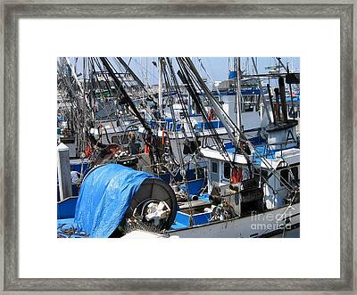 Fishing Boats In Monterey Harbor Framed Print