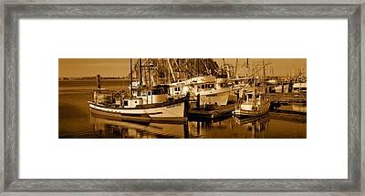 Fishing Boats In The Sea, Morro Bay Framed Print