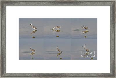 Fishing Crane Framed Print