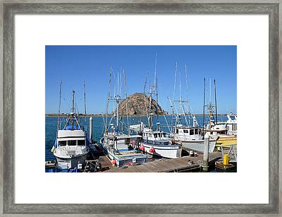 Fishing Fleet In Front Of Morro Rock Framed Print by Barbara Snyder