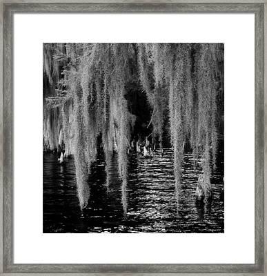 Fishing Hole Framed Print by David Mcchesney