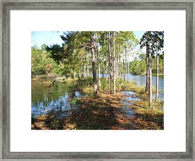 Fishing Hole Framed Print by Joanne Askew