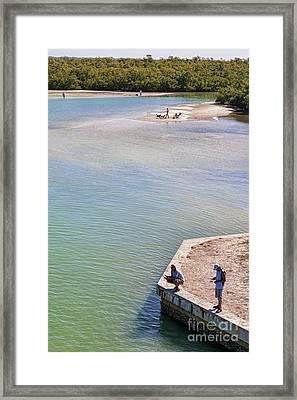Fishing In Estero Bay Near Fort Myers Beach Florida Framed Print by William Kuta