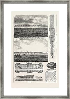 Fishing Net, Fishnet, Nets, Knotting A Thin Thread Framed Print by English School