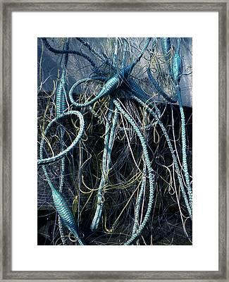 Fishing Net Play   Framed Print by Colette V Hera  Guggenheim