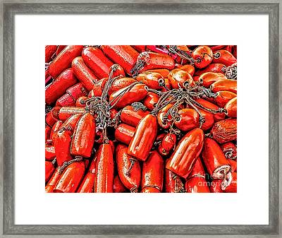 Fishing Net Buoys Framed Print