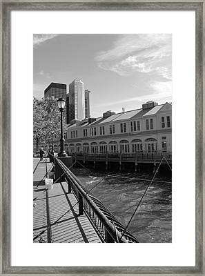 Fishing On The Harbor Framed Print by Dan Sproul
