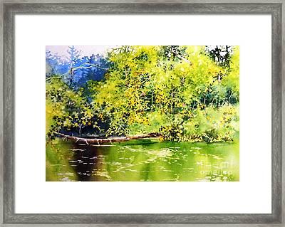 Fishing Pond Framed Print