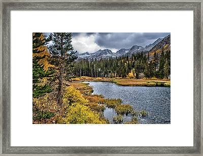 Fishing Spot Framed Print by Cat Connor