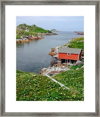 Fishing Stage Little Fogo Island Newfoundland Framed Print