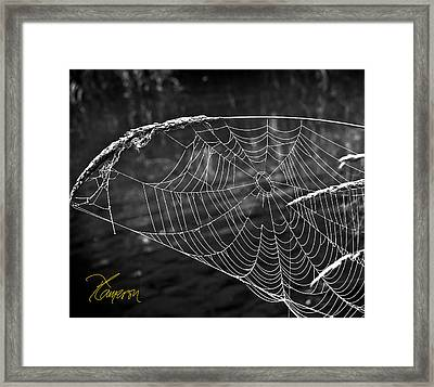Framed Print featuring the photograph Fishing The Breeze by Tom Cameron