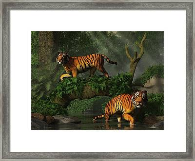 Fishing Tigers Framed Print by Daniel Eskridge