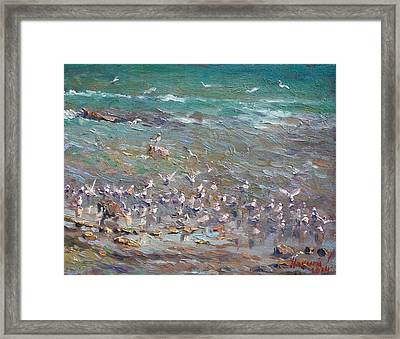 Fishing Time Framed Print by Ylli Haruni