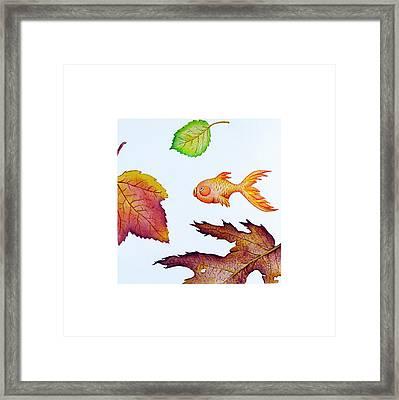Fishsalad 4 Framed Print by Laura Dozor