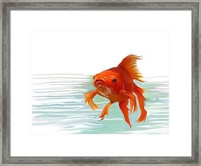 Fishy Fishy Fish Framed Print by Christian Kolle