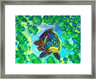 Fishy Framed Print