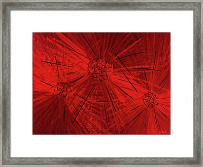 Fission II Framed Print by Rick Roth