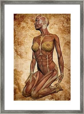 Fit Female Revealed Framed Print by Daniel Hagerman