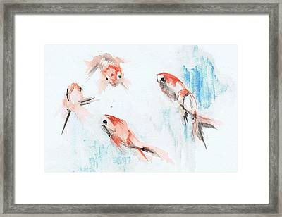 Five Goldfish Framed Print