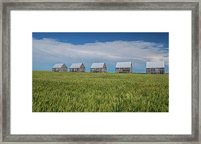 Five Granaries On Wheat Field, Alberta Framed Print by Panoramic Images