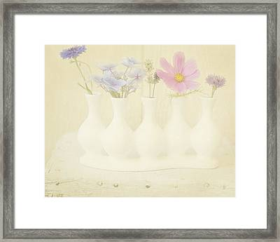 Five Little Bouquets Framed Print by Bonnie Bruno