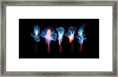 Five Magic Spoons  Framed Print by Floriana Barbu