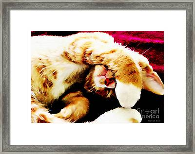 Five More Minutes Framed Print by Nancy E Stein
