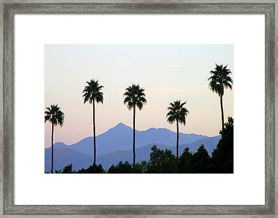 Five Palms Framed Print