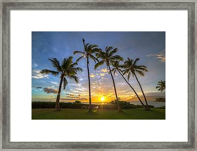 Five Palms Sunset Framed Print by Pierre Leclerc Photography