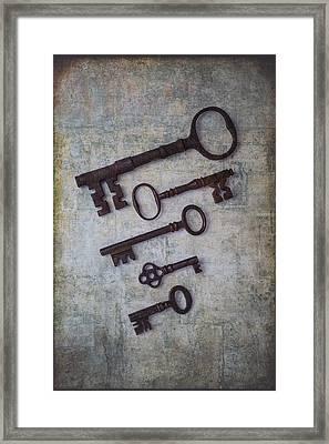 Five Rusty Keys Framed Print