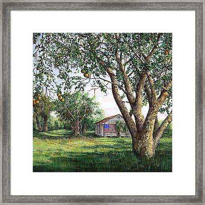 Flag House Framed Print