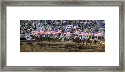Flag Line Framed Print