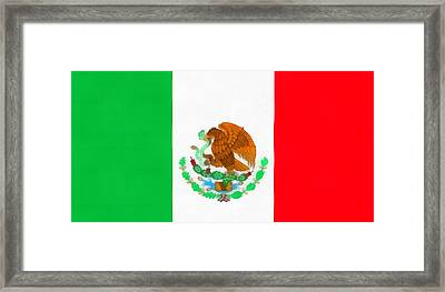 Flag Of Mexico Framed Print by Dan Sproul