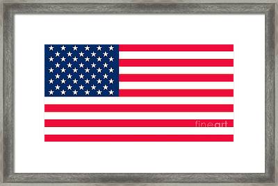 Flag Of The United States Of America Framed Print by Anonymous