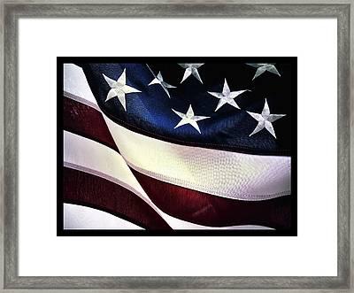 Flag Spotting At The Va Framed Print