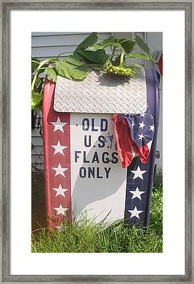 Flags Only Framed Print
