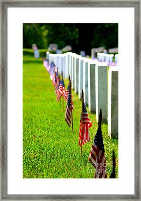 Flags In Framed Print by Patti Whitten