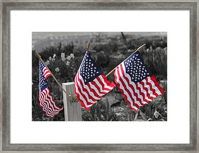Flags Framed Print by Mary Burr
