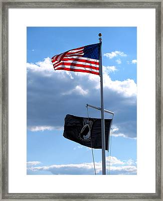 Flags Of The Brave Framed Print by Colleen Kammerer