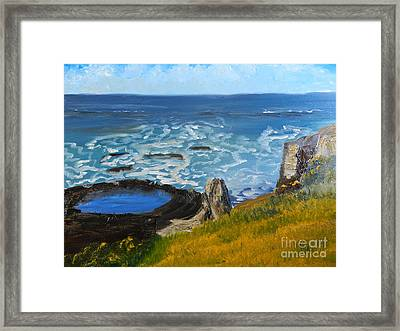 Flagstaff Point  Framed Print