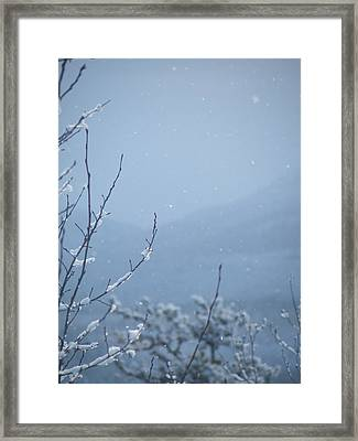 Framed Print featuring the photograph Flakes by Brian Boyle