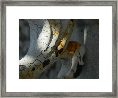 Flaky Framed Print by Tara Miller