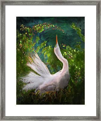 Flamboyant Egret Framed Print by Melinda Hughes-Berland