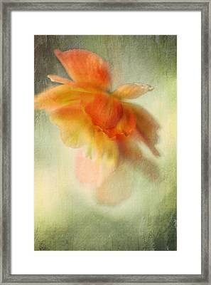 Flame Framed Print by Annie Snel