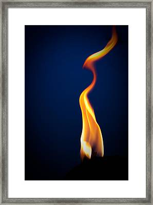 Flame Framed Print by Darryl Dalton